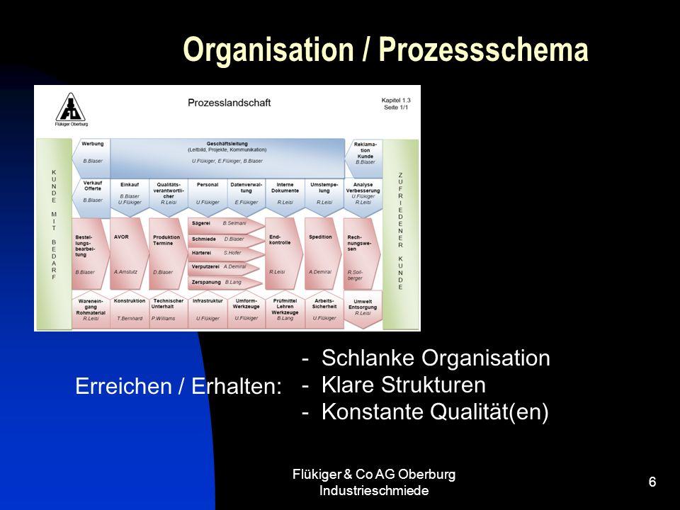 Organisation / Prozessschema