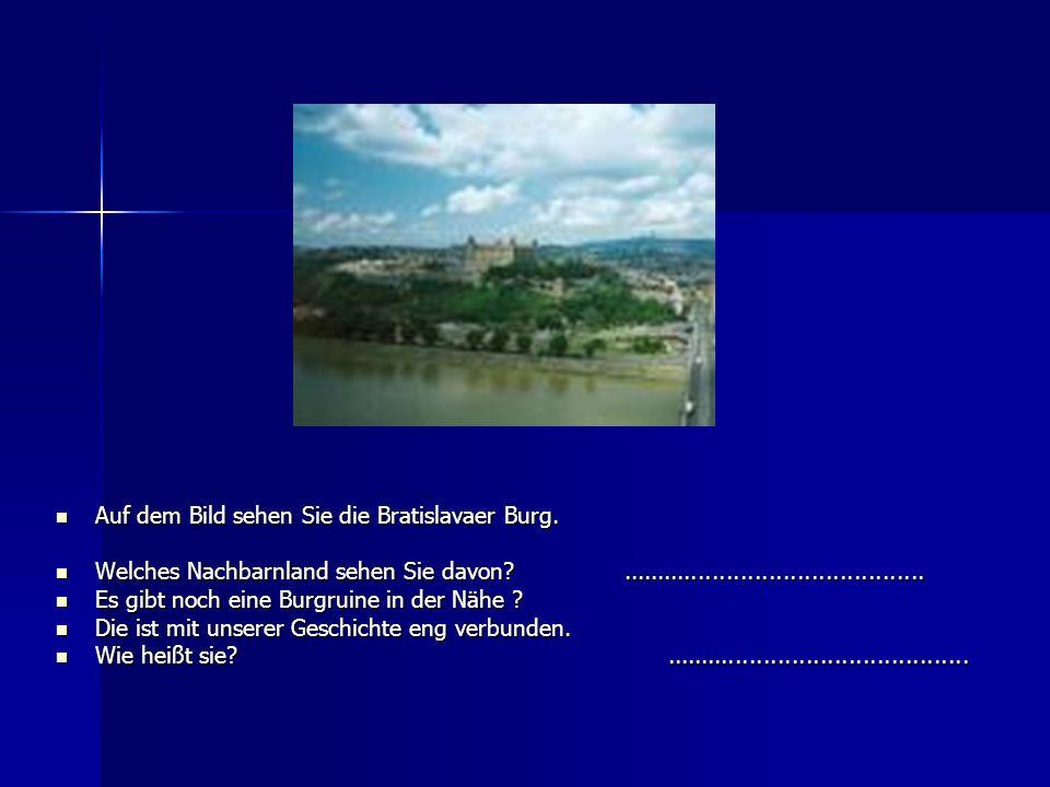 Auf dem Bild sehen Sie die Bratislavaer Burg.