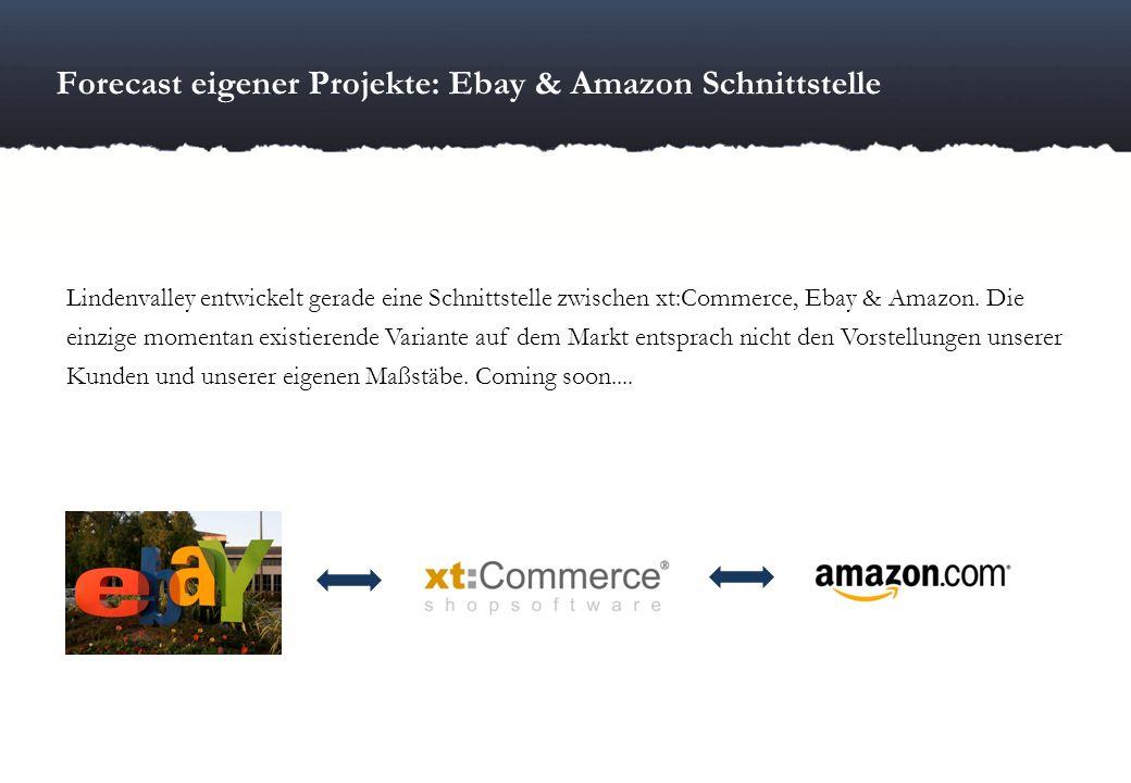 Forecast eigener Projekte: Ebay & Amazon Schnittstelle