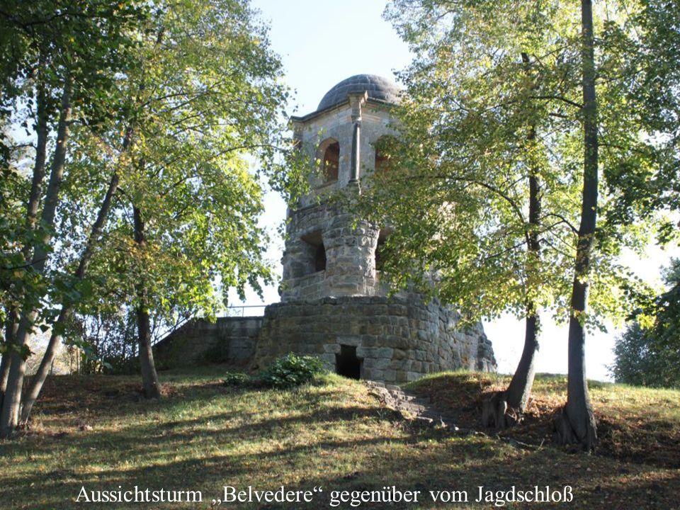 """Aussichtsturm """"Belvedere gegenüber vom Jagdschloß"""