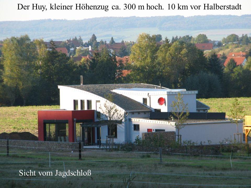 Der Huy, kleiner Höhenzug ca. 300 m hoch. 10 km vor Halberstadt