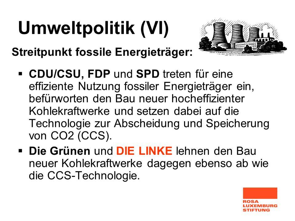 Umweltpolitik (VI) Streitpunkt fossile Energieträger: