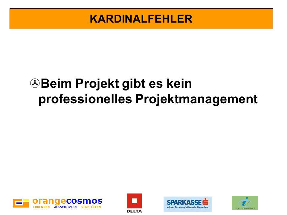 Beim Projekt gibt es kein professionelles Projektmanagement