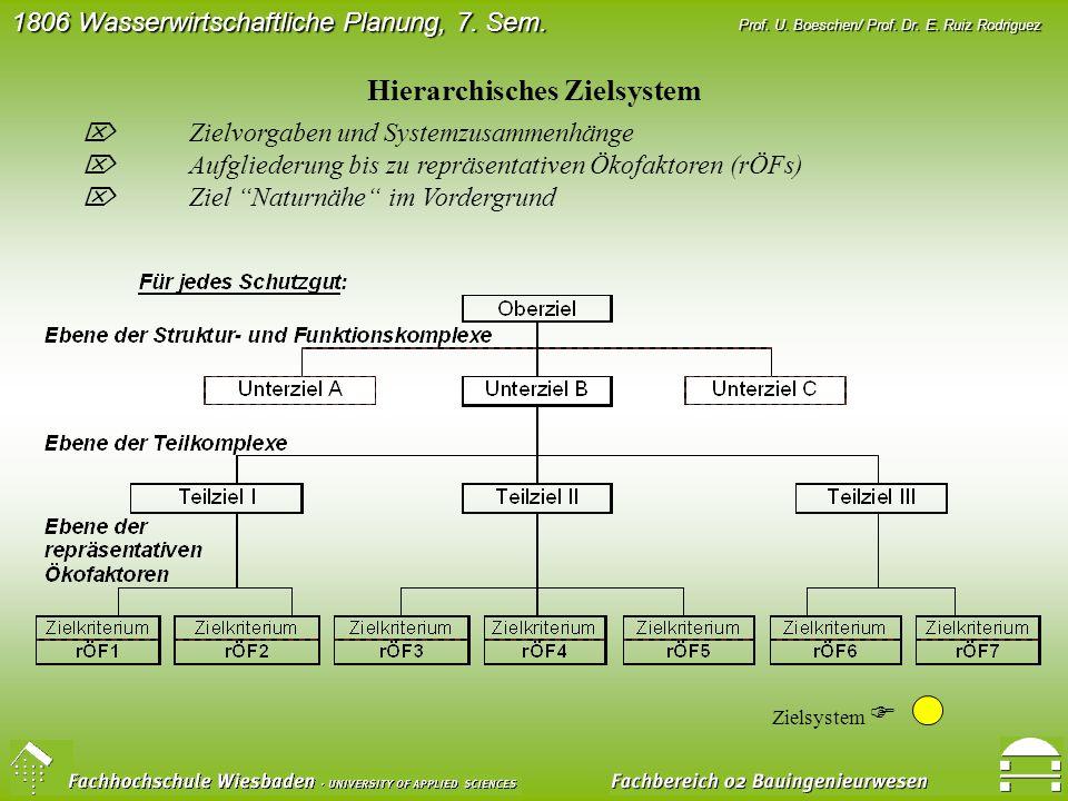 Hierarchisches Zielsystem