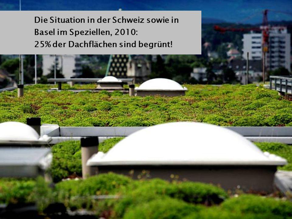 Die Situation in der Schweiz sowie in Basel im Speziellen, 2010: