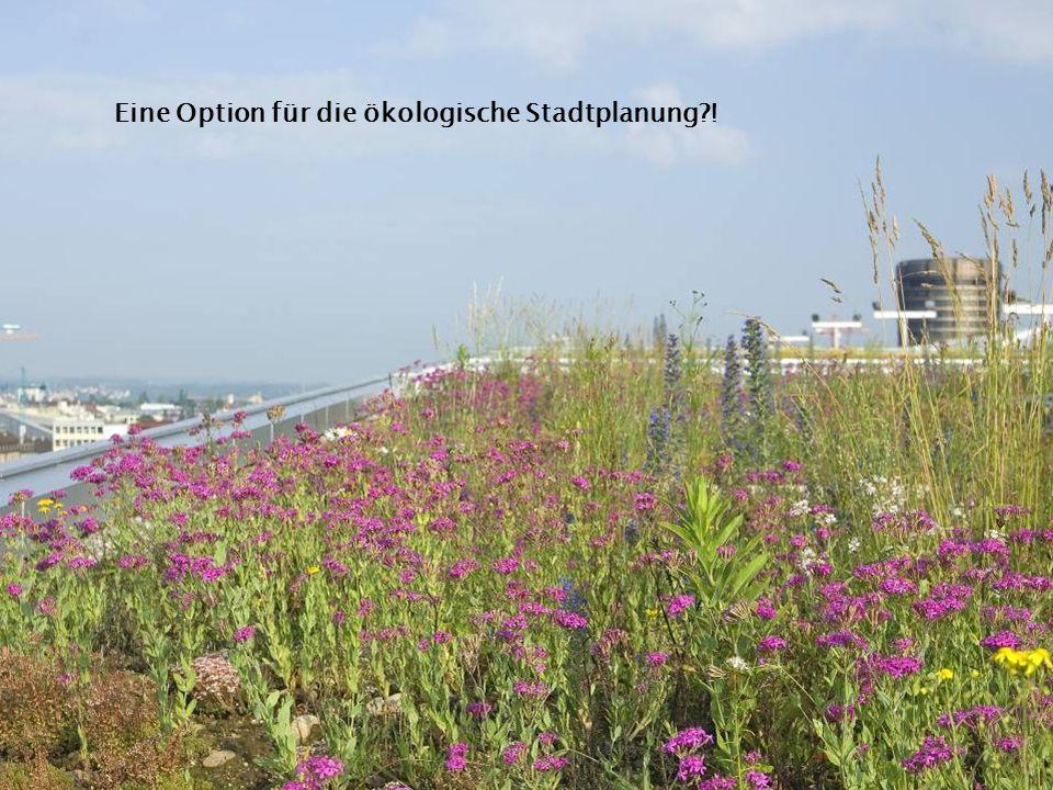 Eine Option für die ökologische Stadtplanung !