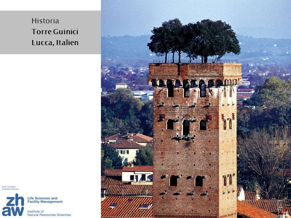 Historia Torre Guinici Lucca, Italien