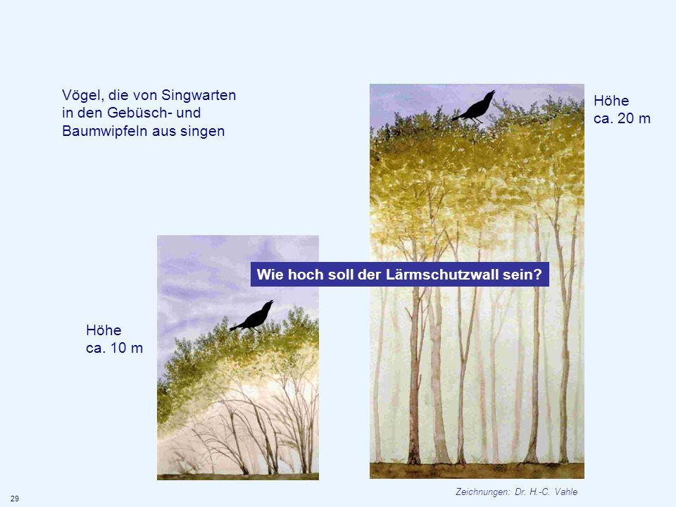 Vögel, die von Singwarten in den Gebüsch- und Baumwipfeln aus singen