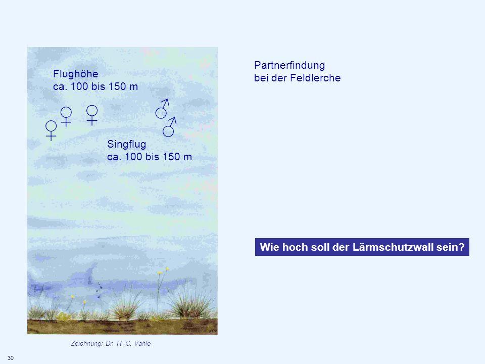 ♂ ♀ ♀ ♂ ♀ Partnerfindung bei der Feldlerche Flughöhe ca. 100 bis 150 m
