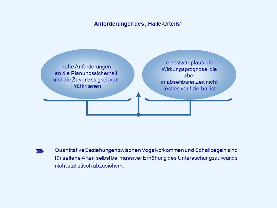 """Anforderungen des """"Halle-Urteils"""