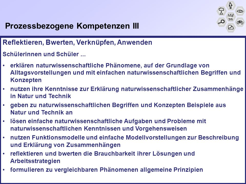 Prozessbezogene Kompetenzen III