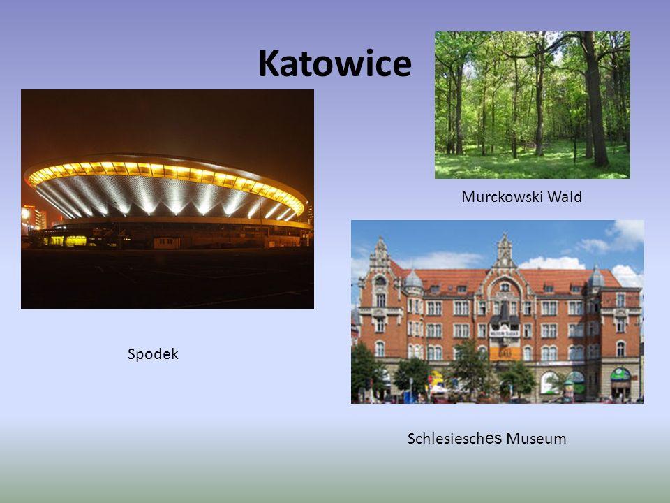 Katowice Murckowski Wald Spodek Schlesiesches Museum