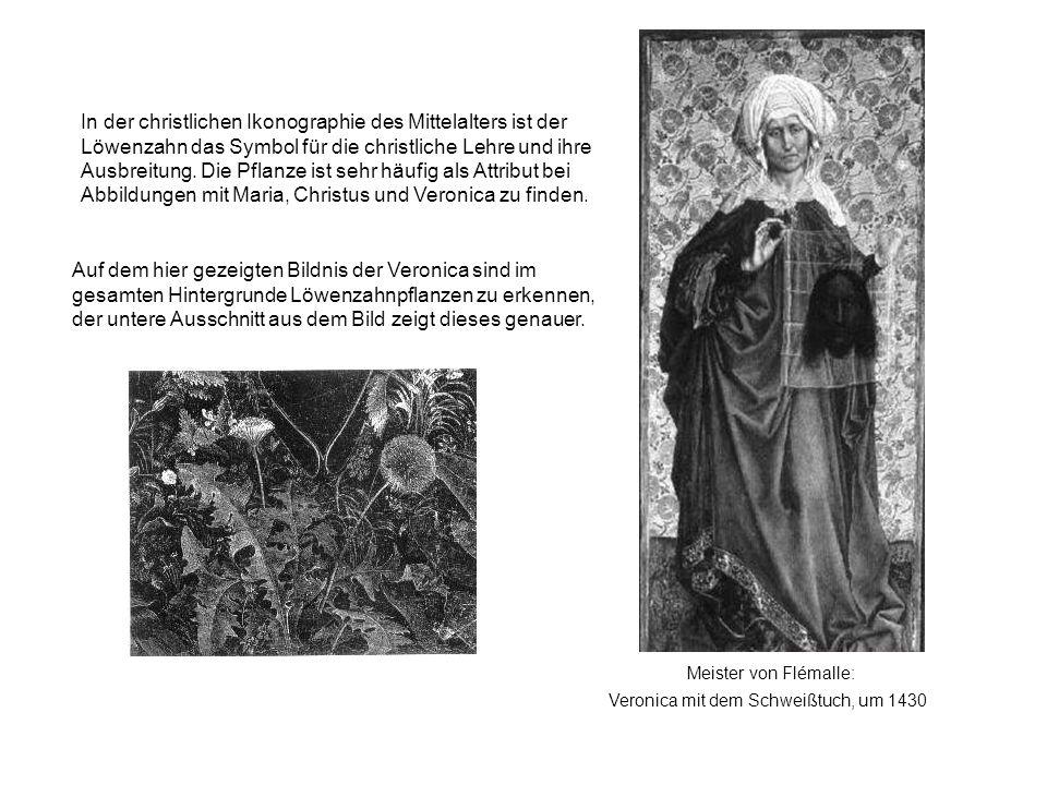 In der christlichen Ikonographie des Mittelalters ist der Löwenzahn das Symbol für die christliche Lehre und ihre Ausbreitung. Die Pflanze ist sehr häufig als Attribut bei Abbildungen mit Maria, Christus und Veronica zu finden.