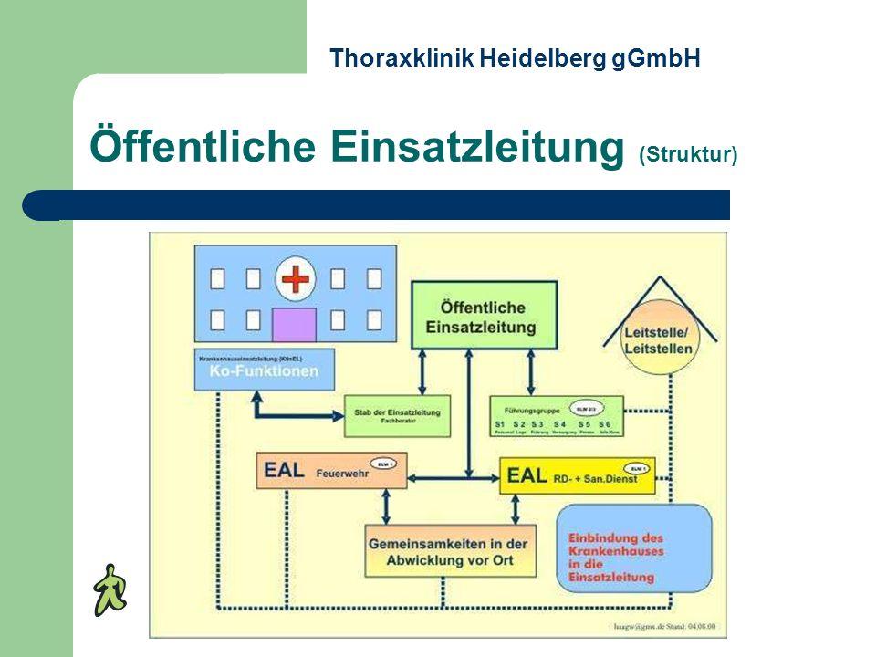Öffentliche Einsatzleitung (Struktur)