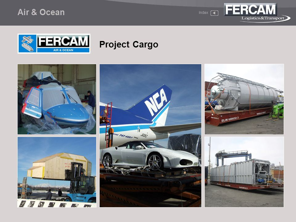 Air & Ocean Index Project Cargo