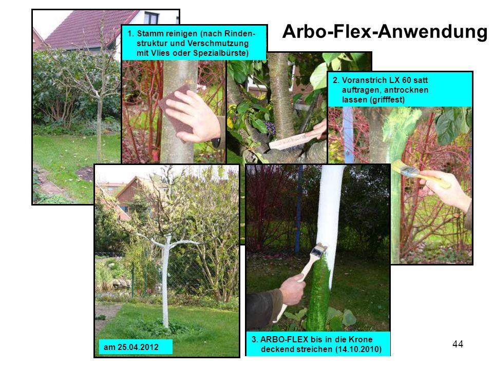 Arbo-Flex-Anwendung 1. Stamm reinigen (nach Rinden-