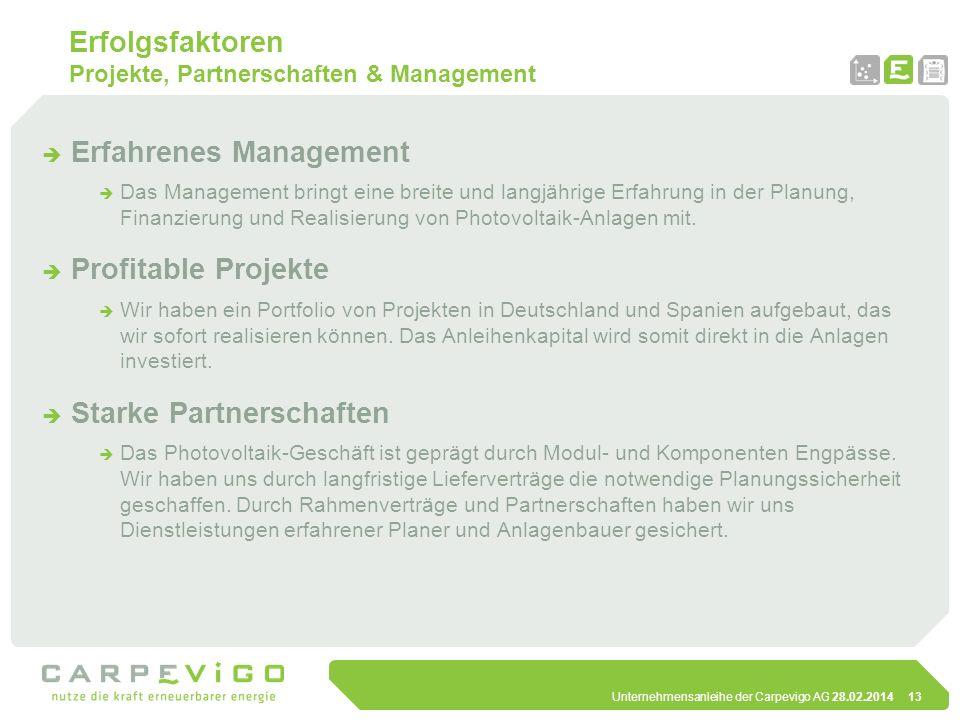 Erfolgsfaktoren Projekte, Partnerschaften & Management