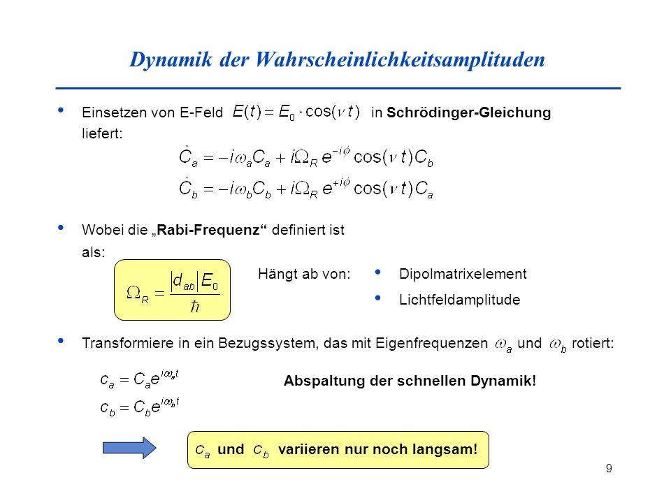Dynamik der Wahrscheinlichkeitsamplituden