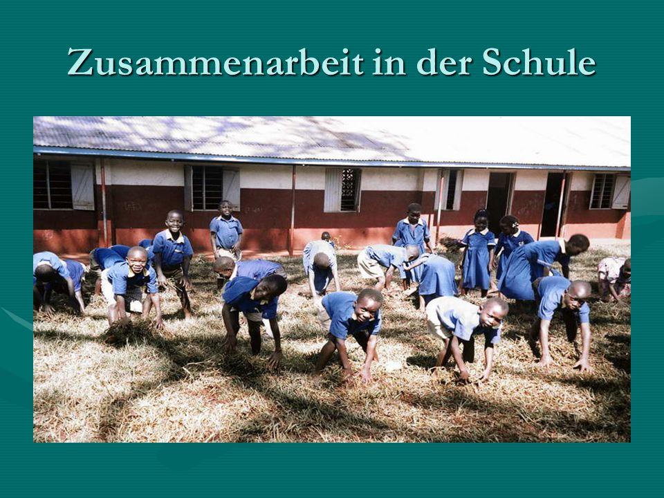 Zusammenarbeit in der Schule