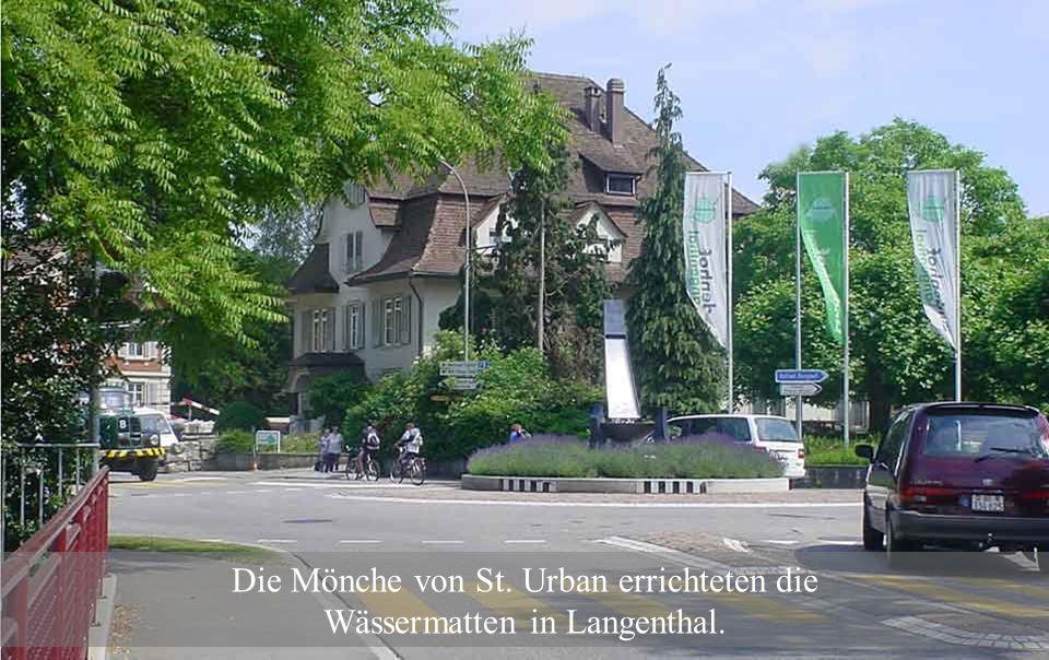Die Mönche von St. Urban errichteten die Wässermatten in Langenthal.