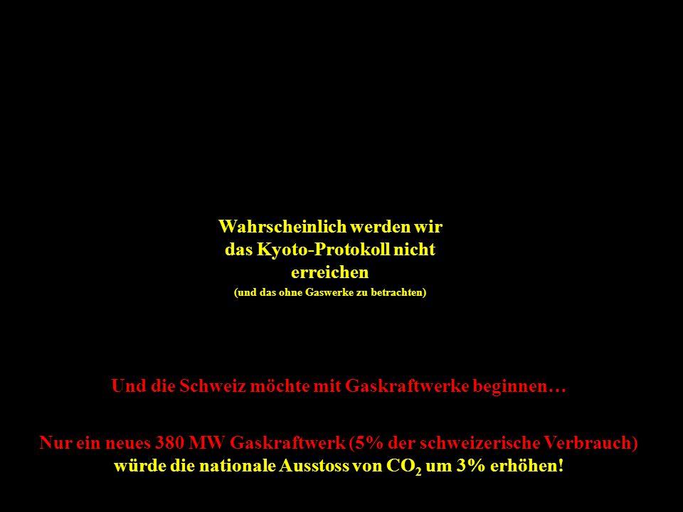 Wahrscheinlich werden wir das Kyoto-Protokoll nicht erreichen