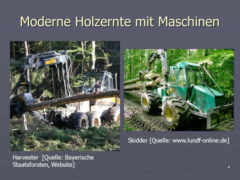 Moderne Holzernte mit Maschinen