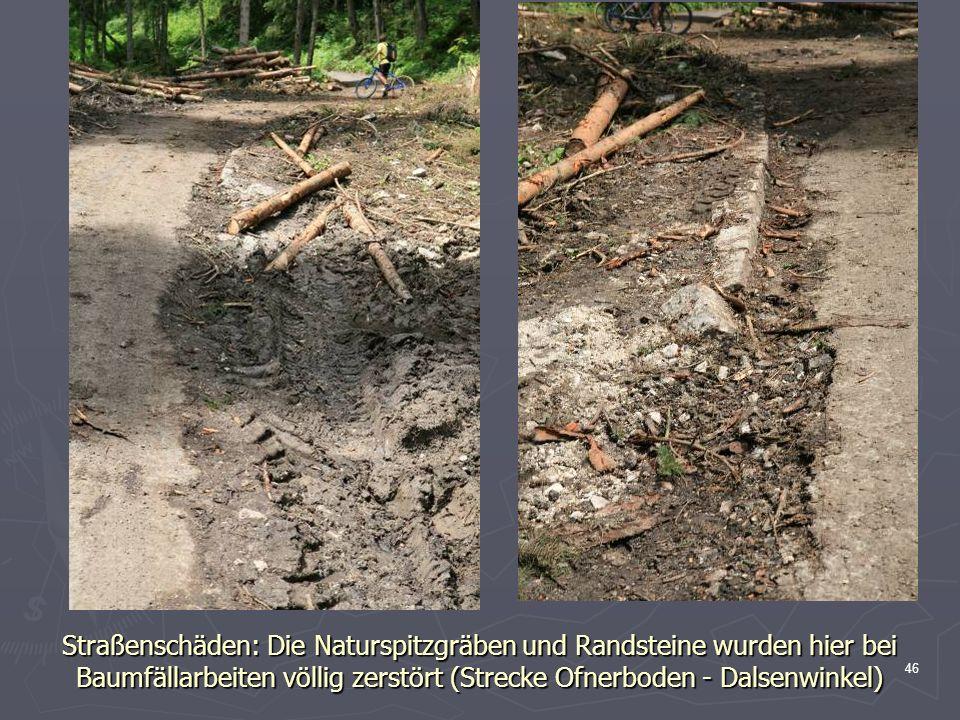 Straßenschäden: Die Naturspitzgräben und Randsteine wurden hier bei Baumfällarbeiten völlig zerstört (Strecke Ofnerboden - Dalsenwinkel)