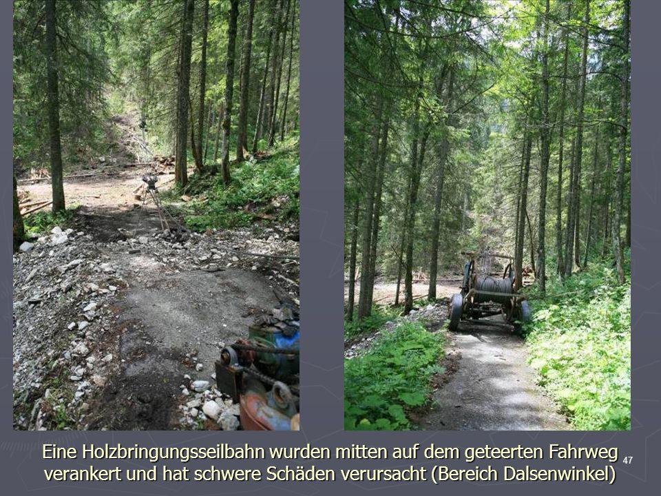 Eine Holzbringungsseilbahn wurden mitten auf dem geteerten Fahrweg verankert und hat schwere Schäden verursacht (Bereich Dalsenwinkel)