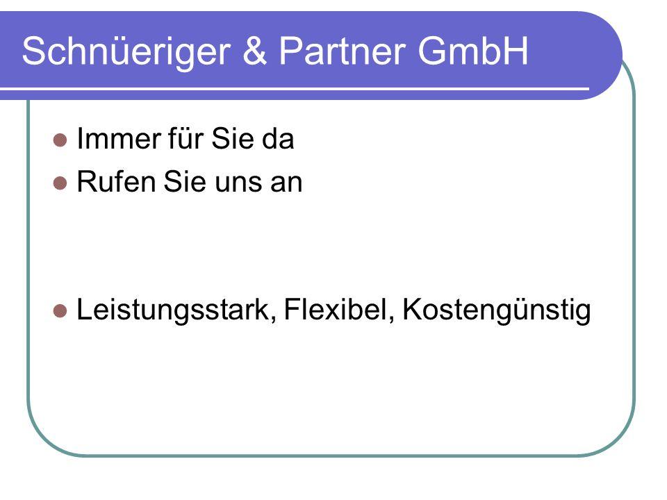 Schnüeriger & Partner GmbH