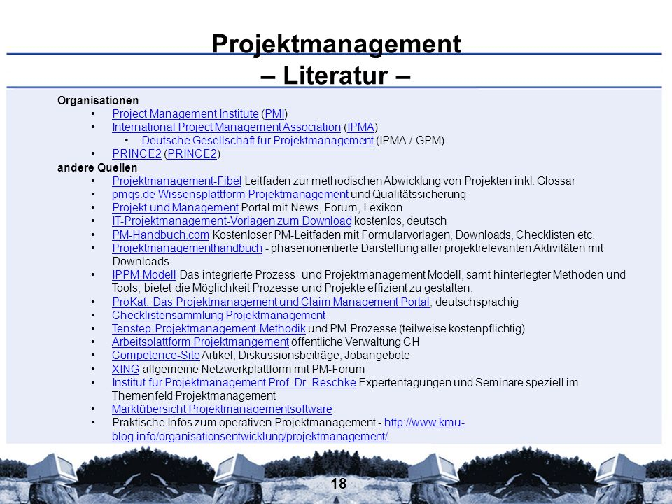 Projektmanagement – Literatur –