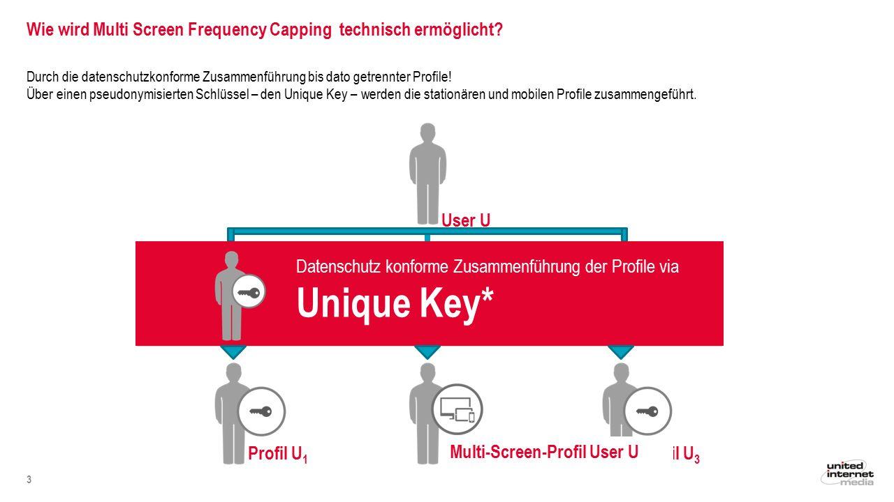 Wie wird Multi Screen Frequency Capping technisch ermöglicht