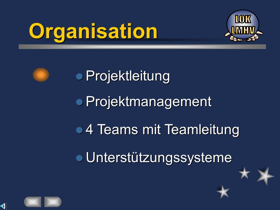 Organisation LOK LMHV Projektleitung Projektmanagement