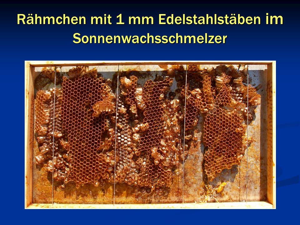 Rähmchen mit 1 mm Edelstahlstäben im Sonnenwachsschmelzer