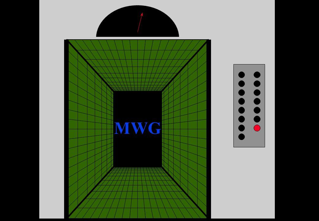 MWG 114
