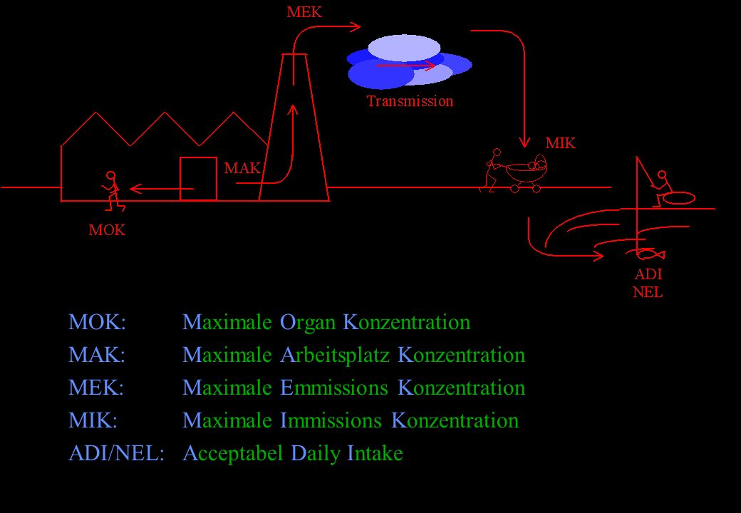 MOK: Maximale Organ Konzentration