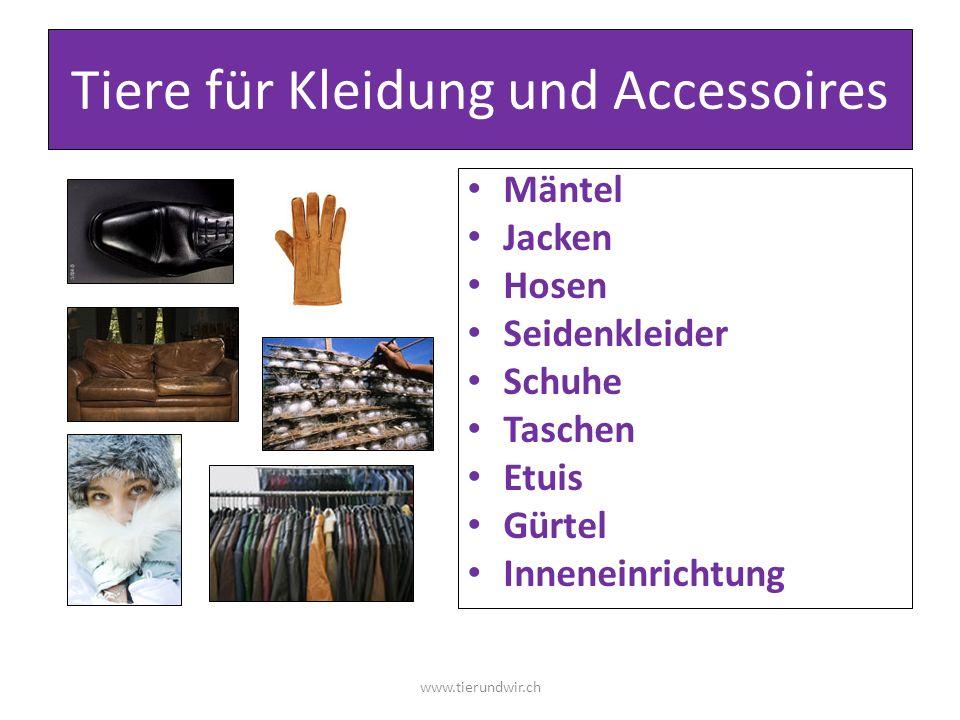 Tiere für Kleidung und Accessoires