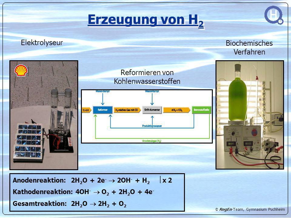 Erzeugung von H2 Elektrolyseur Biochemisches Verfahren