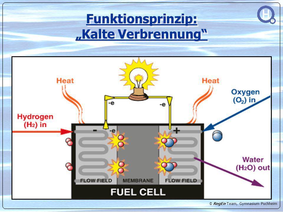 """Funktionsprinzip: """"Kalte Verbrennung"""