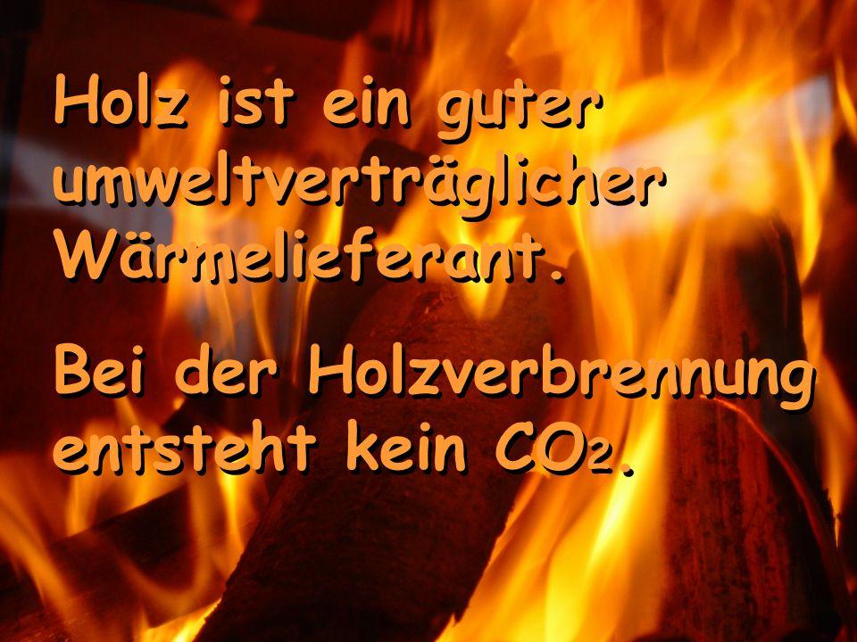 Holz ist ein guter umweltverträglicher Wärmelieferant.