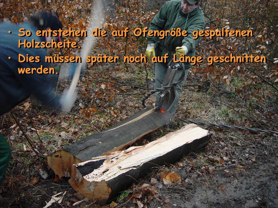 So entstehen die auf Ofengröße gespaltenen Holzscheite.