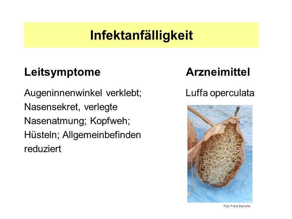 Infektanfälligkeit Leitsymptome Arzneimittel