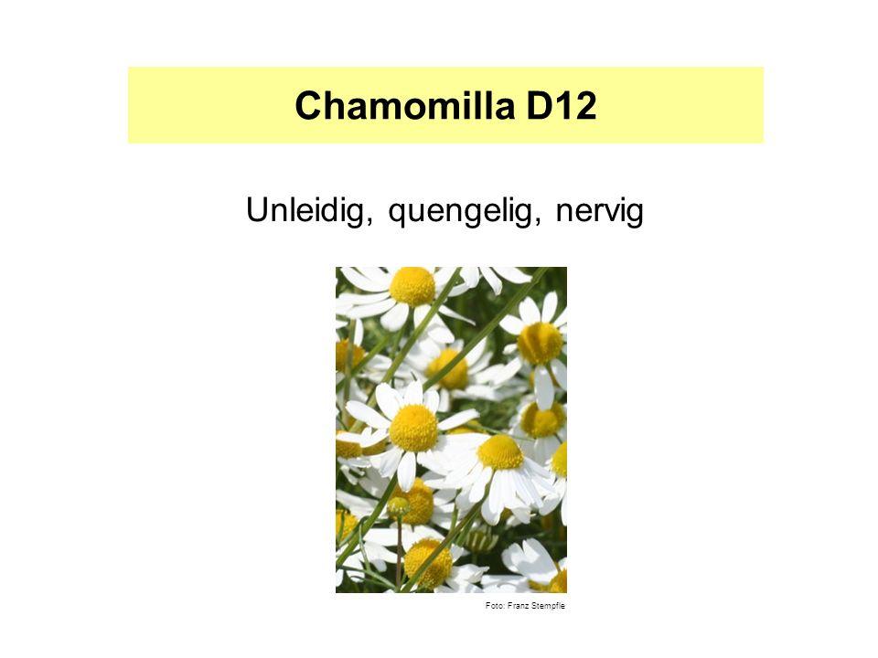 Chamomilla D12 Unleidig, quengelig, nervig Foto: Franz Stempfle