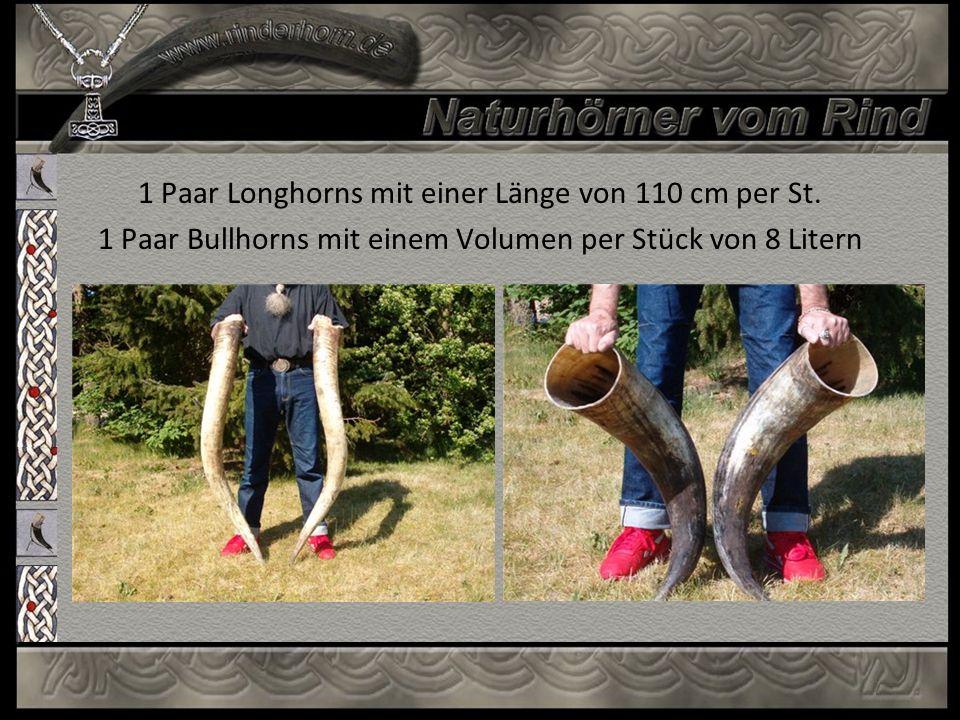 1 Paar Longhorns mit einer Länge von 110 cm per St.