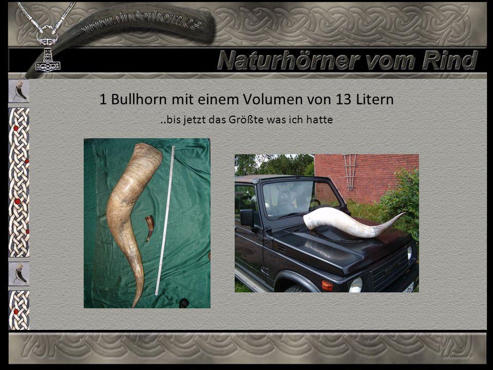 1 Bullhorn mit einem Volumen von 13 Litern