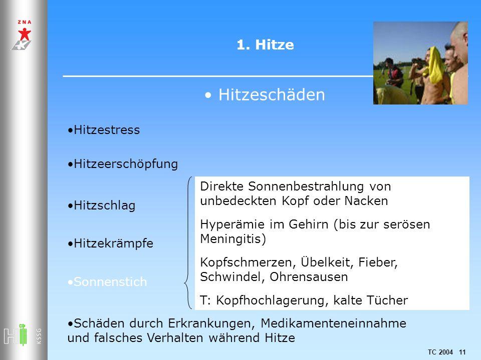 Hitzeschäden 1. Hitze Hitzestress Hitzeerschöpfung