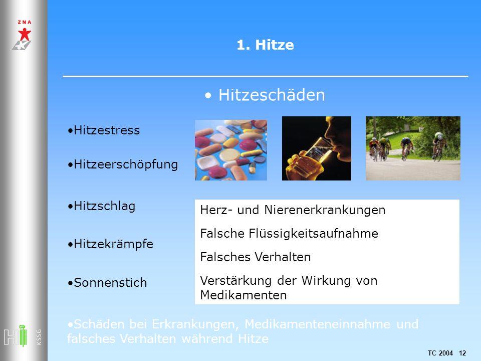 Hitzeschäden 1. Hitze Hitzestress Hitzeerschöpfung Hitzschlag
