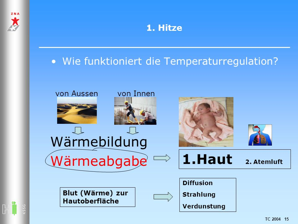 Wie funktioniert die Temperaturregulation