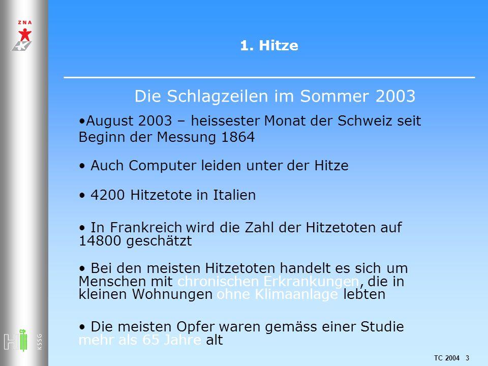 Die Schlagzeilen im Sommer 2003