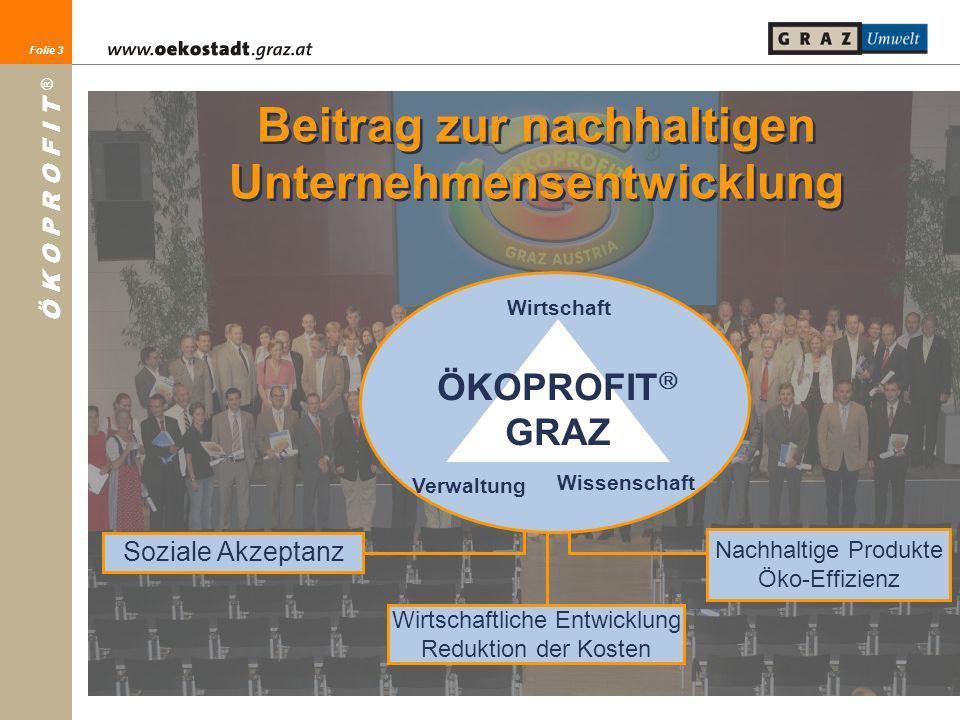 Beitrag zur nachhaltigen Unternehmensentwicklung
