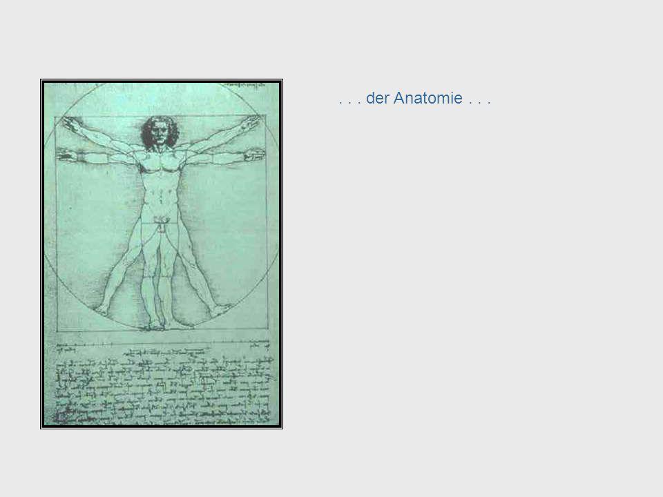 Da Vinci, cont. – Anatomy . . . der Anatomie . . . . . . anatomy . . .
